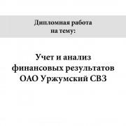 Учет и анализ финансовых результатов ОАО Уржумский СВЗ
