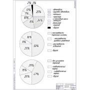 Статистика причин ДТП